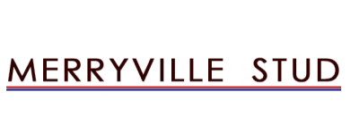 Merryville Poll