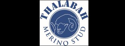 Thalabah