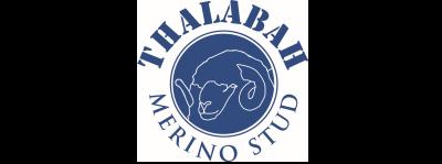 Thalabah Poll