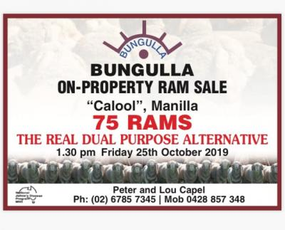 Bungulla, Manilla, On-property sale